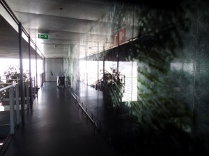 The hallways are all open to the air on one side and a festival of decorative glass throughout.